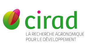 Recrutement d'un doctorant au CIRAD– Thèse sur la gouvernance du crabe de mangrove