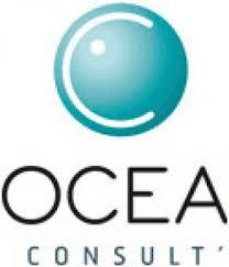 Recrutement Chef de projet – OCEA Consult'